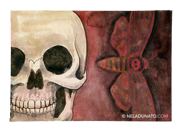 Death's Head Hawkmoth mixed media sketchbook page by Nela Dunato